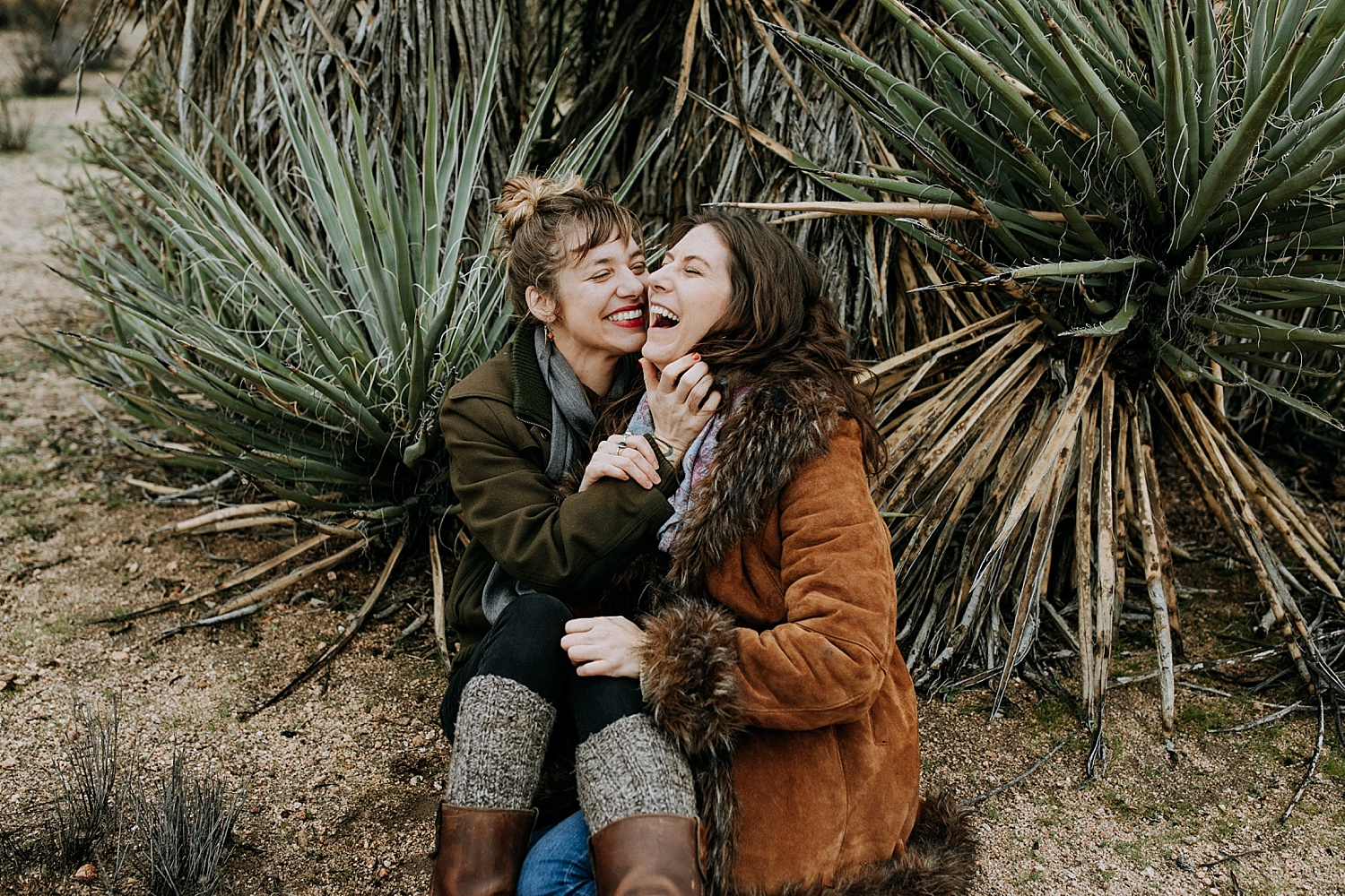 couple cuddling and sitting in front of greenery in Joshua Tree, California photography